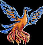 Phoenix AV Solutions